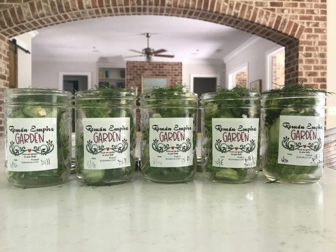 Let the pickling season begin!