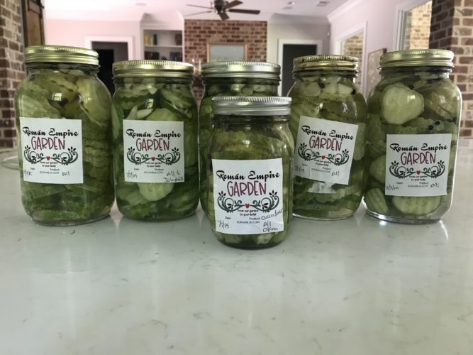 Another batch of pickles made!